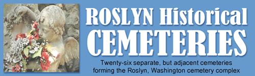 Roslyn Kiosk Software